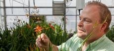 Horticulture -- U of M Varieties -- Flowers -- Other flowers